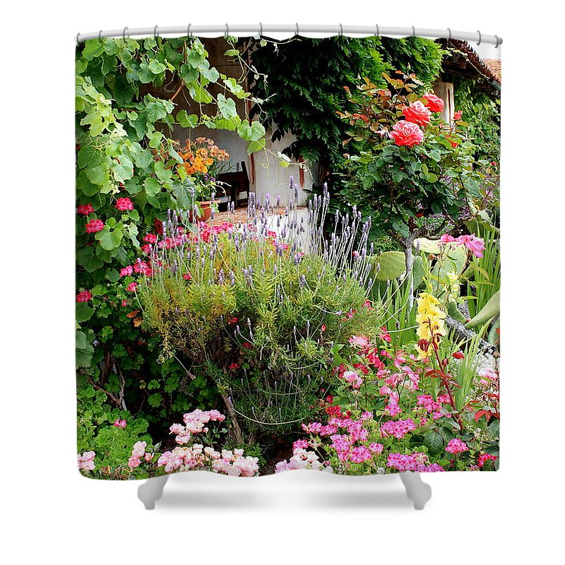 Garden Shower Curtain featuring the photograph Mission Garden by Carol Groenen