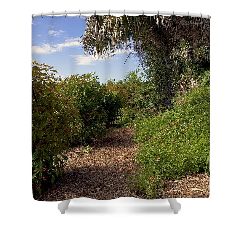 Florida Shower Curtain featuring the photograph Pelican Island In Florida by Allan Hughes