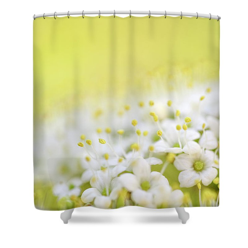 Flowering Trees Shower Curtains