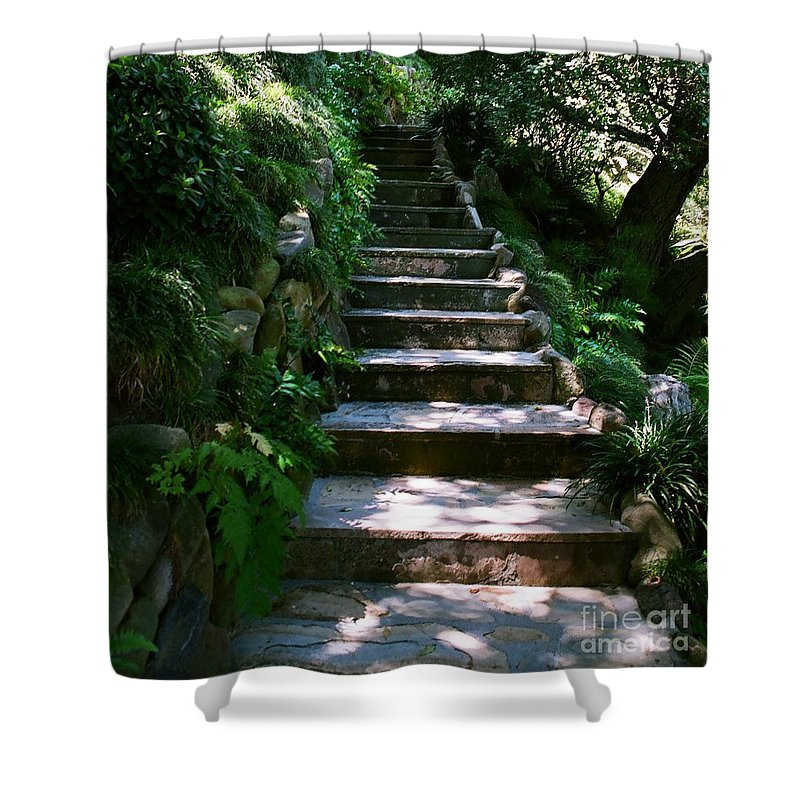 Nature Shower Curtain featuring the photograph Stone Steps by Dean Triolo