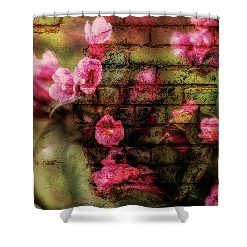 Pink Flowers Shower Curtain featuring the photograph Summer Flowers by Jim Bembinster