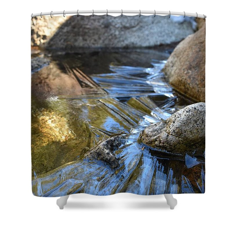 Blue Shower Curtain featuring the photograph Trail To Tokopah Falls by Will Sylwester