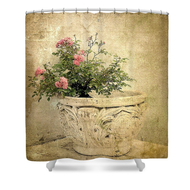 Vintage Shower Curtain featuring the photograph Vintage Still Life by Jessica Jenney