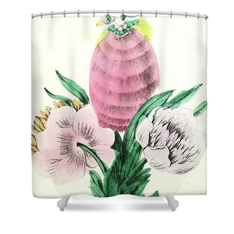 Botanical Shower Curtain featuring the digital art Vintage Botanical Illustration by Alexandr Testudo