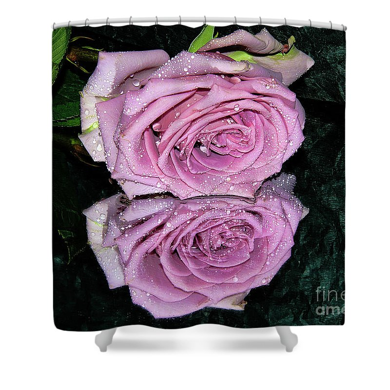 Flowers Shower Curtain featuring the photograph Purple Rose by Elvira Ladocki
