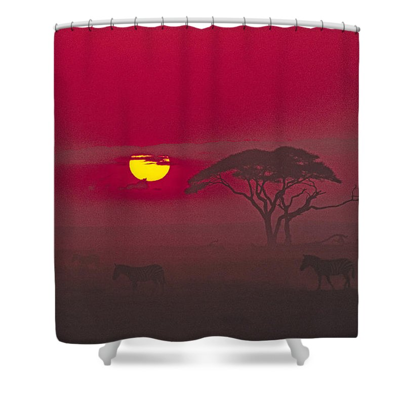 Africa Shower Curtain featuring the photograph African Sunrise by Michele Burgess