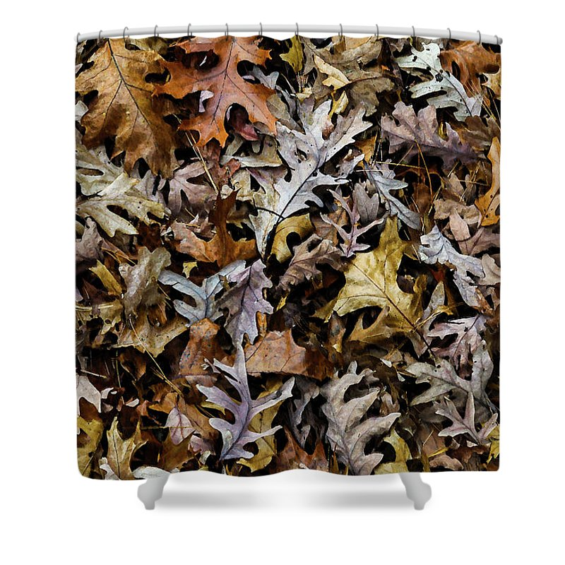 Autumn Leaves Shower Curtain featuring the photograph Autumn Leaves by Greg Thiemeyer