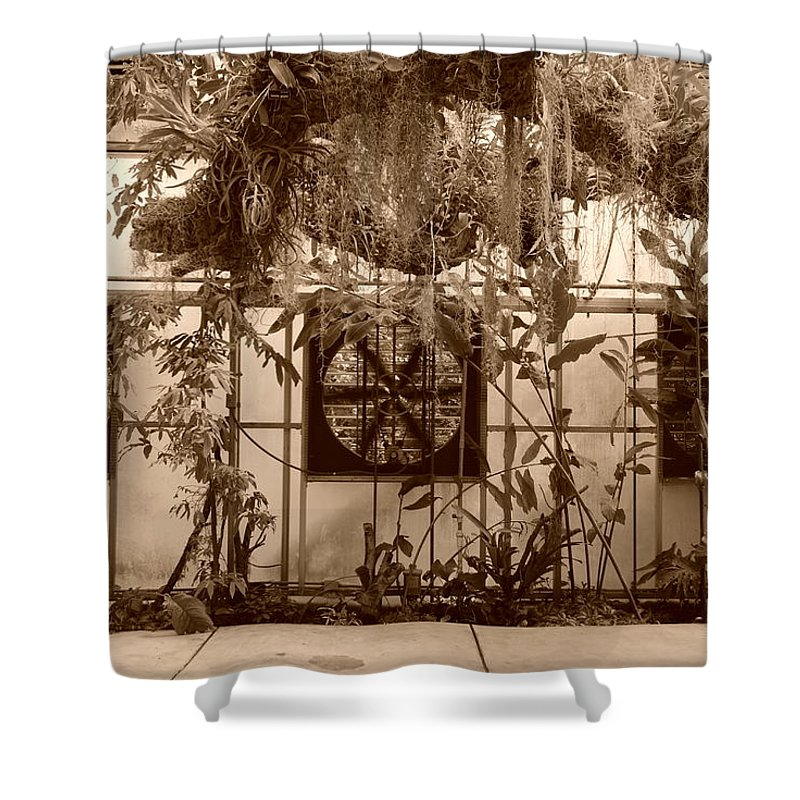 Vent Shower Curtain featuring the photograph 3 Fans And Vines by Rob Hans