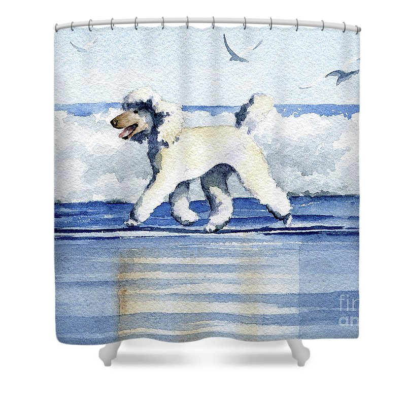 Poodle At The Beach Shower Curtain For Sale By David Rogers
