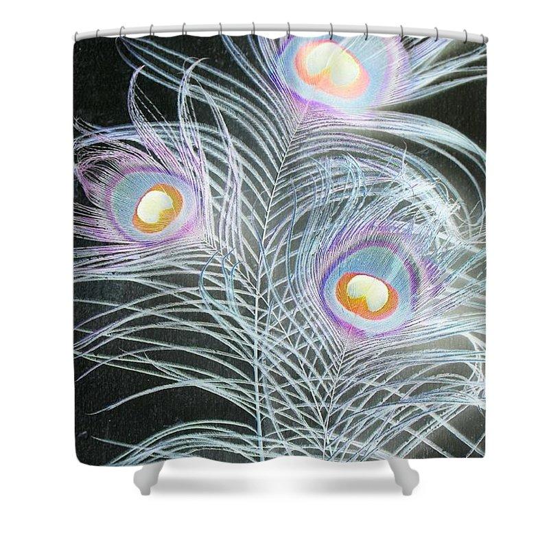 Peacock Shower Curtain featuring the photograph 3 by Stefanie Beauregard