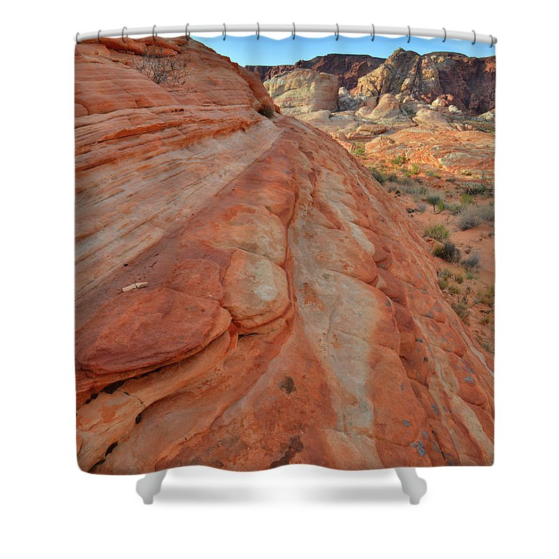 Valley Of Fire State Park Shower Curtain featuring the photograph Wave Of Color In Valley Of Fire by Ray Mathis