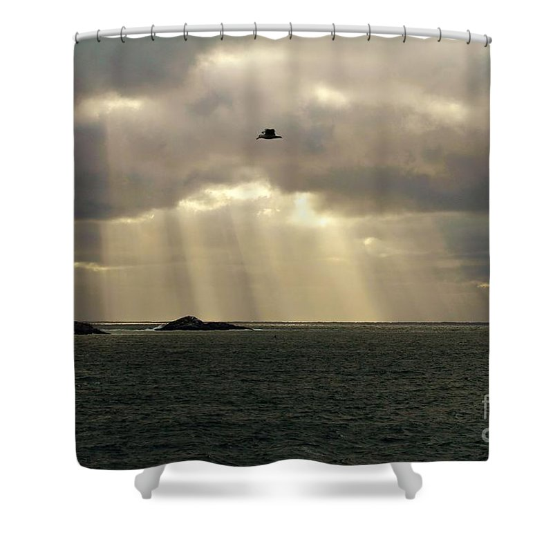 Peaches Point Shower Curtain featuring the photograph Marblehead Ma by Donn Ingemie