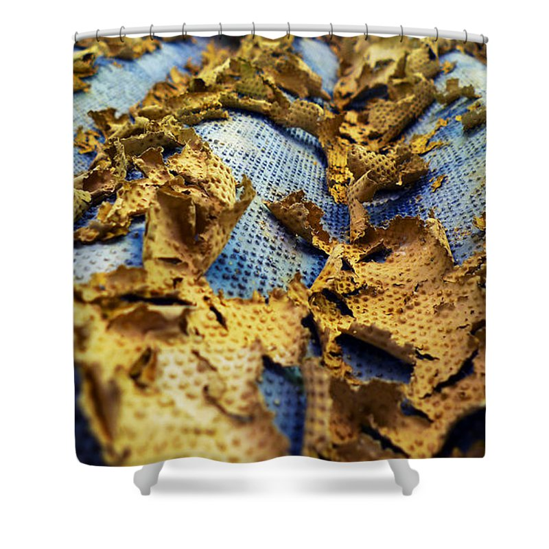 Abstract Shower Curtain featuring the photograph 377 At 41 Series 2 by Skip Hunt