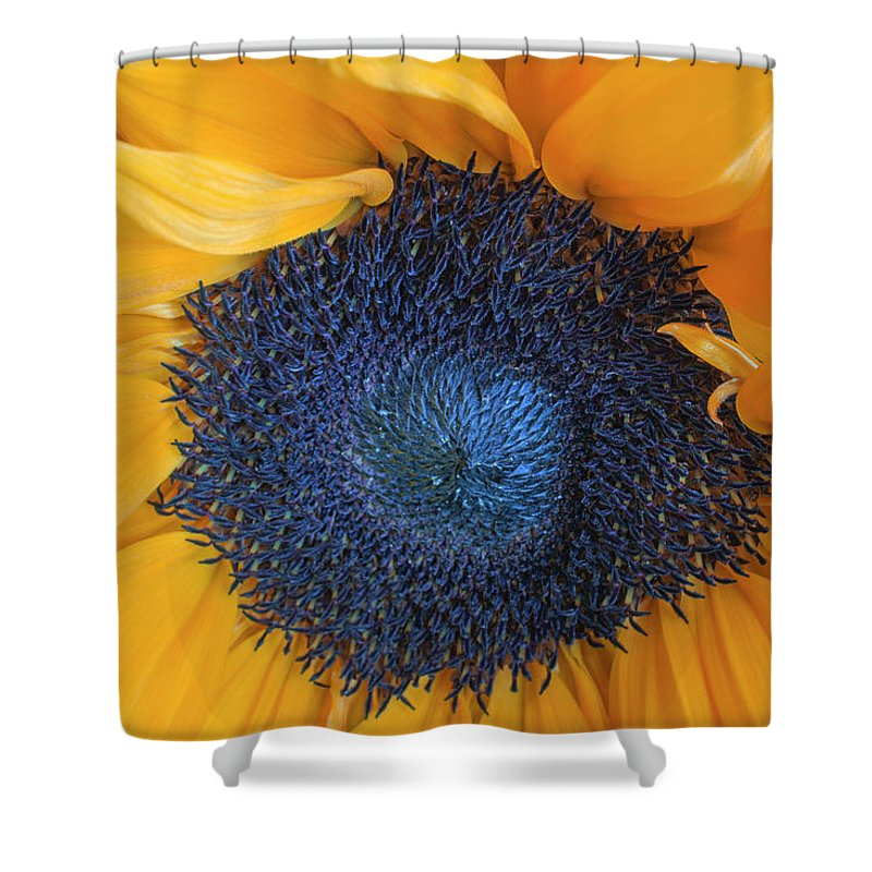 Flower Shower Curtain featuring the photograph Macro Shot Of Flower by Karen Neimeier