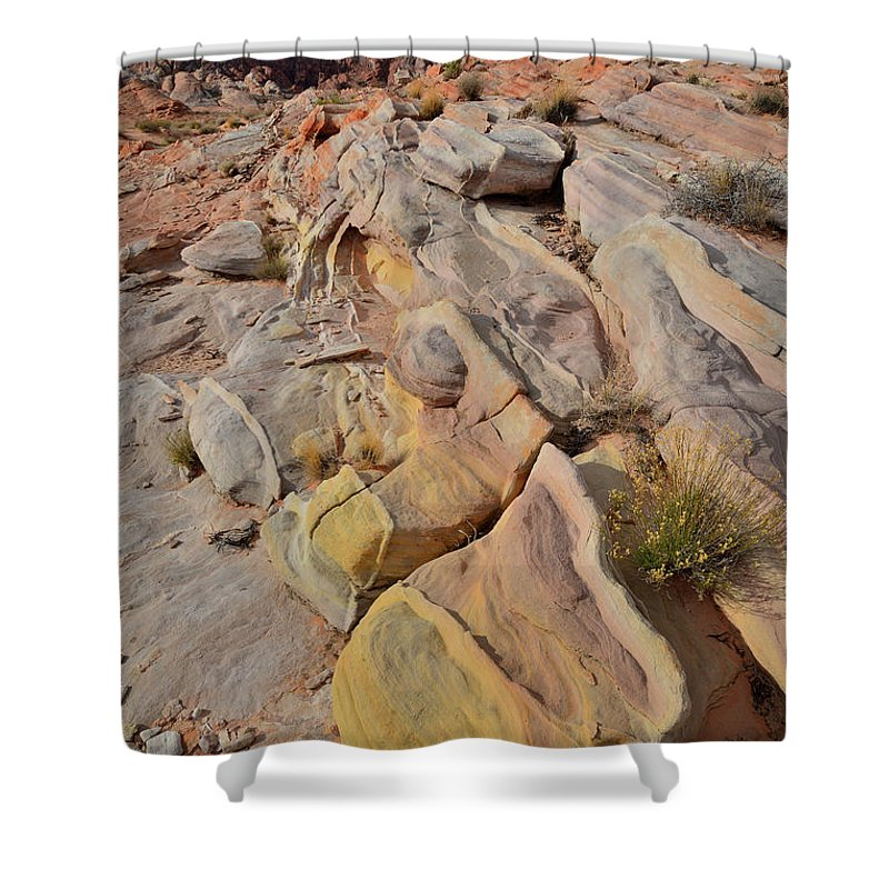 Valley Of Fire State Park Shower Curtain featuring the photograph Rainbow Of Color In Valley Of Fire by Ray Mathis