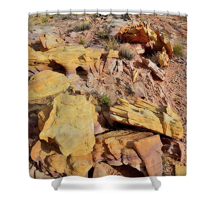 Valley Of Fire State Park Shower Curtain featuring the photograph Splash Of Color In Valley Of Fire by Ray Mathis