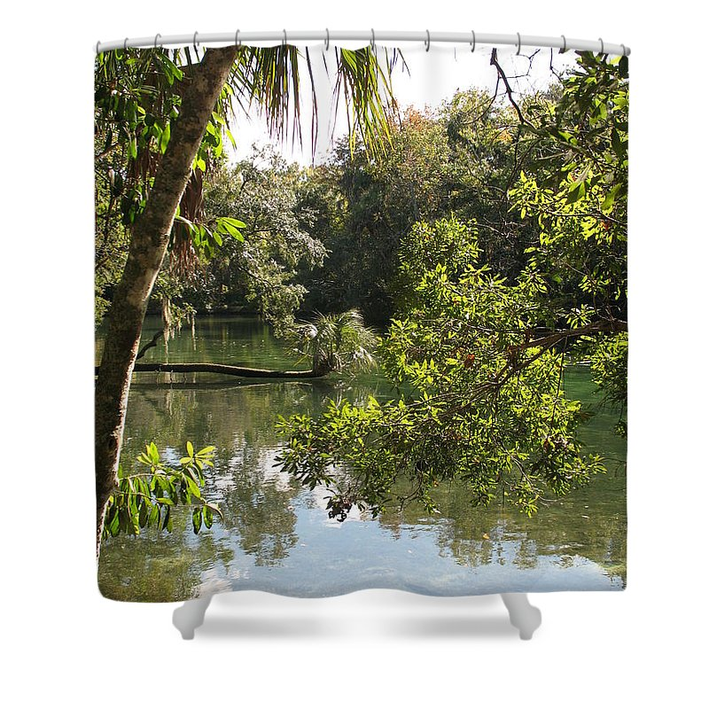 Swamp Shower Curtain featuring the photograph Swamp Reflection by Christiane Schulze Art And Photography