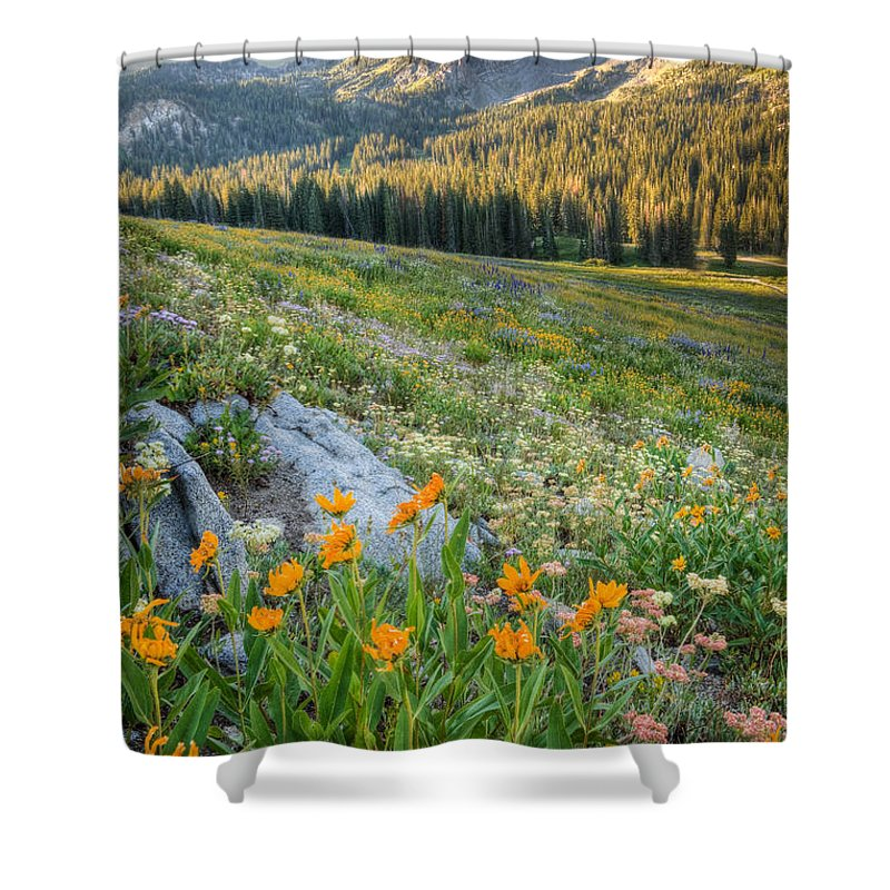 Wasatch Mountains Shower Curtain featuring the photograph Wasatch Mountains by Douglas Pulsipher