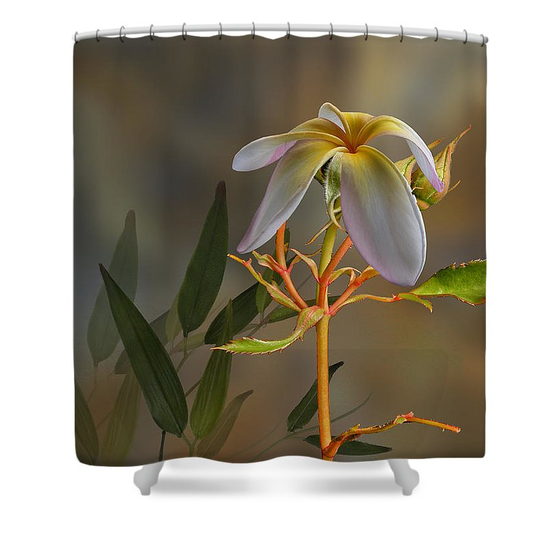 Flowers Shower Curtain featuring the photograph 4067 by Peter Holme III