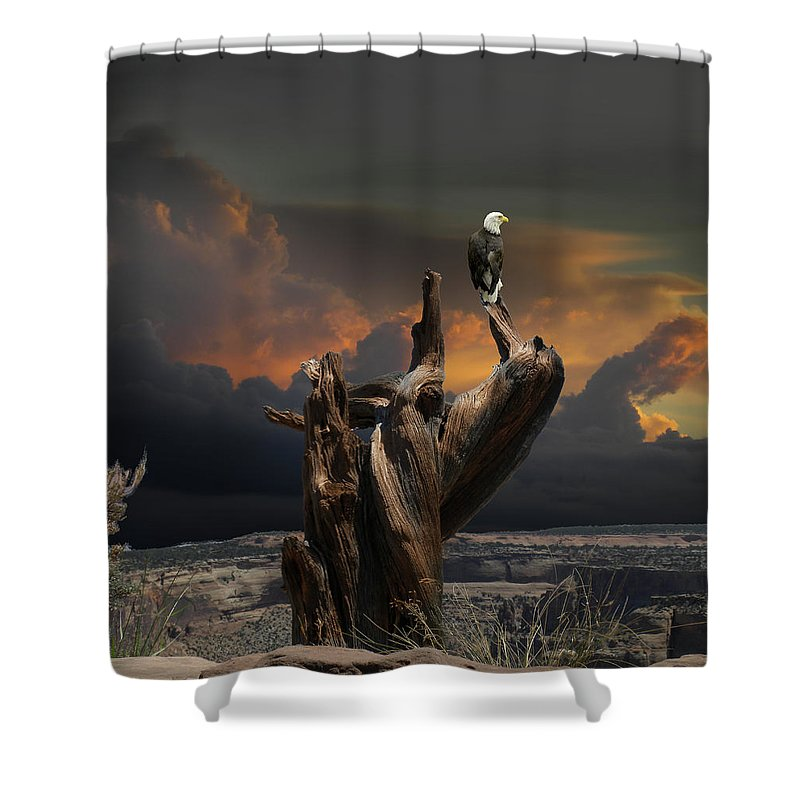 Animal Shower Curtain featuring the photograph 4436 by Peter Holme III