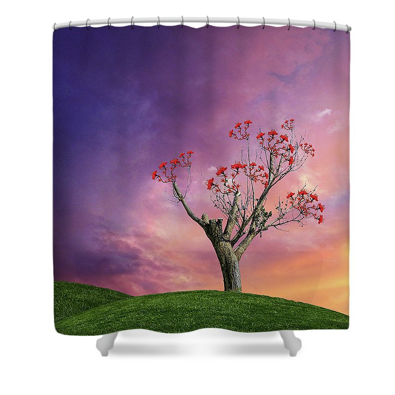 Desert Shower Curtain featuring the photograph 4451 by Peter Holme III