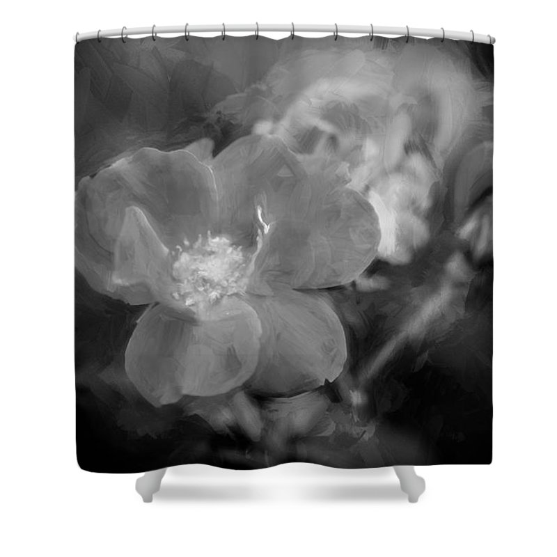 Roses Shower Curtain featuring the photograph Knockout Roses Painted Bw by Rich Franco