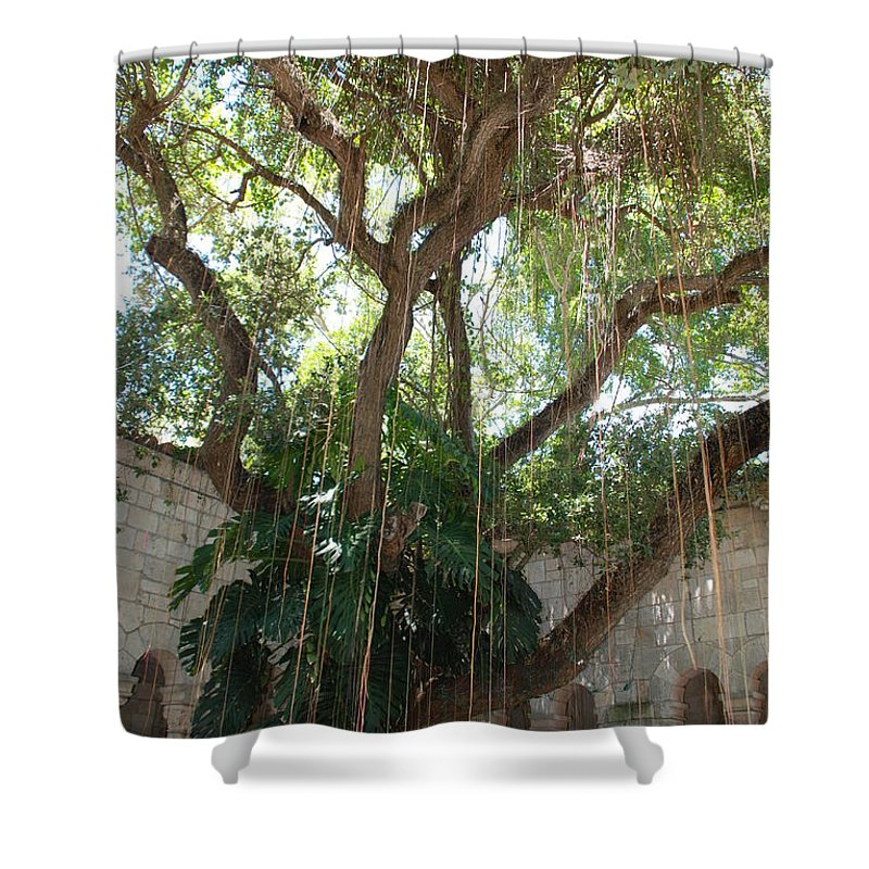 Architecture Shower Curtain featuring the photograph Miami Monastery by Rob Hans