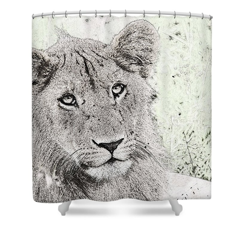 Lion Shower Curtain featuring the photograph lioness Masai Mara, Kenya by Humorous Quotes