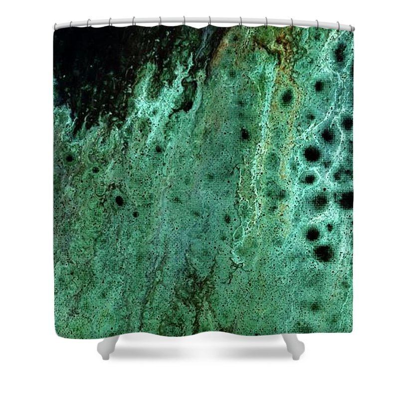 Acrylic Shower Curtain featuring the mixed media Untitled by Shania Wright