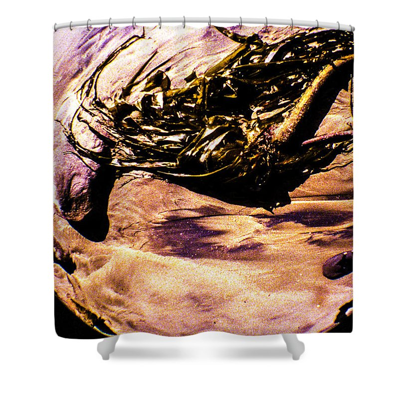 Shower Curtain featuring the photograph Fisheye Camera by Angus Hooper Iii
