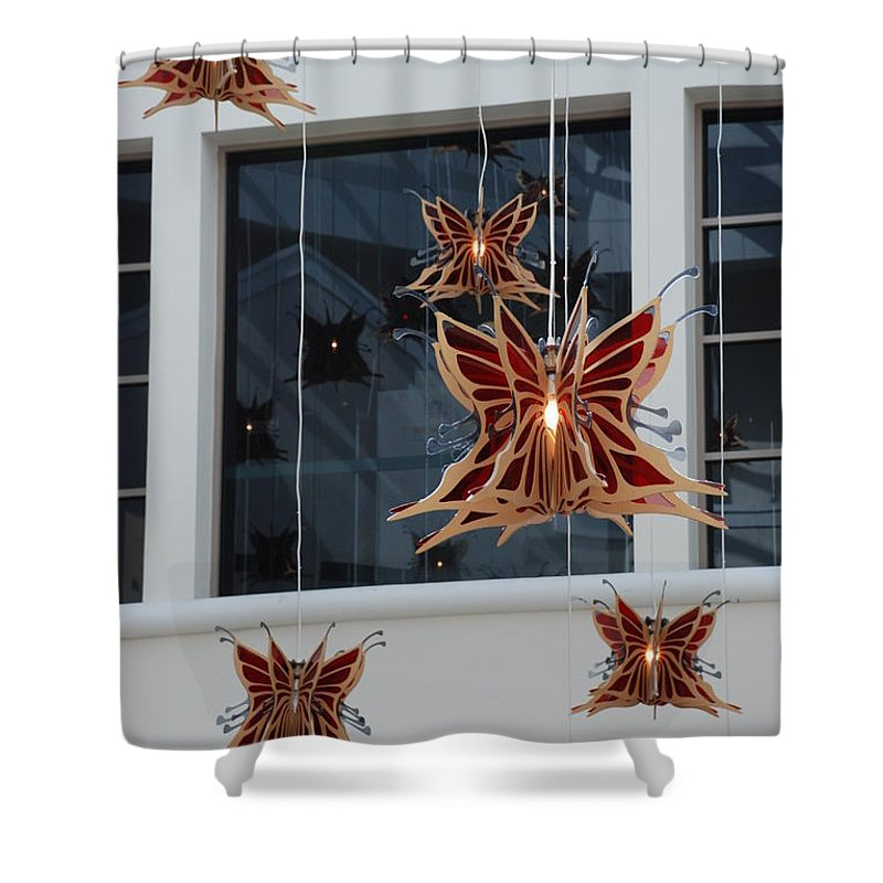 Architecture Shower Curtain featuring the photograph Hanging Butterflies by Rob Hans