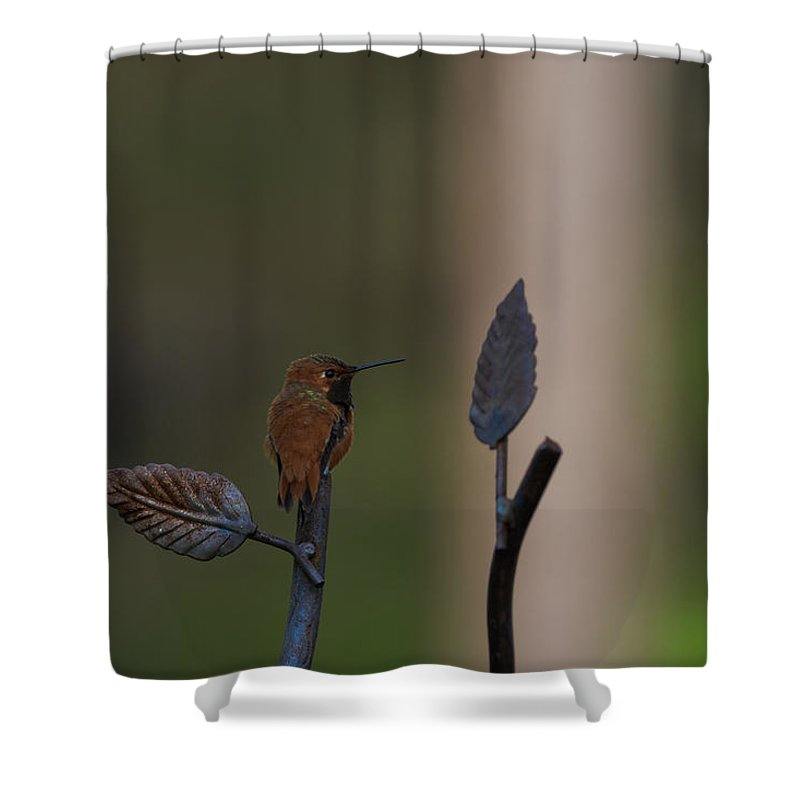 Shower Curtain featuring the photograph 8 by Jerrie Bullock