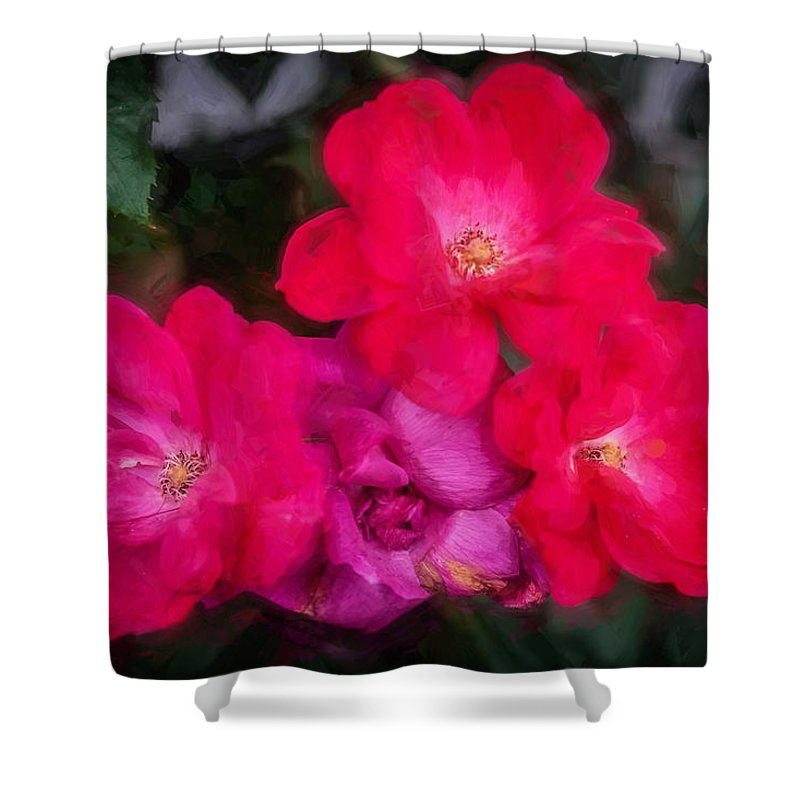 Roses Shower Curtain featuring the photograph Knockout Roses Painted by Rich Franco