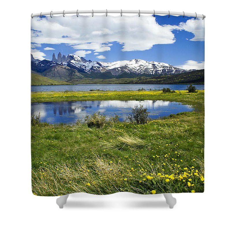 Patagonia Shower Curtain featuring the photograph Springtime In Torres Del Paine by Michele Burgess