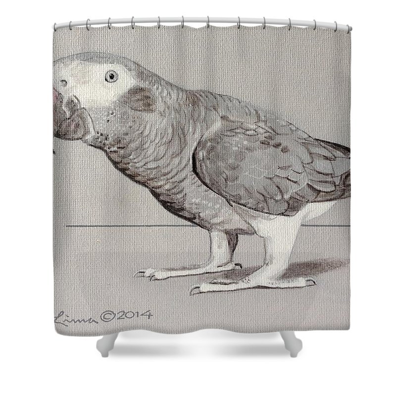 Shower Curtain featuring the painting Timneh Grey Parrot by Pio De Lima