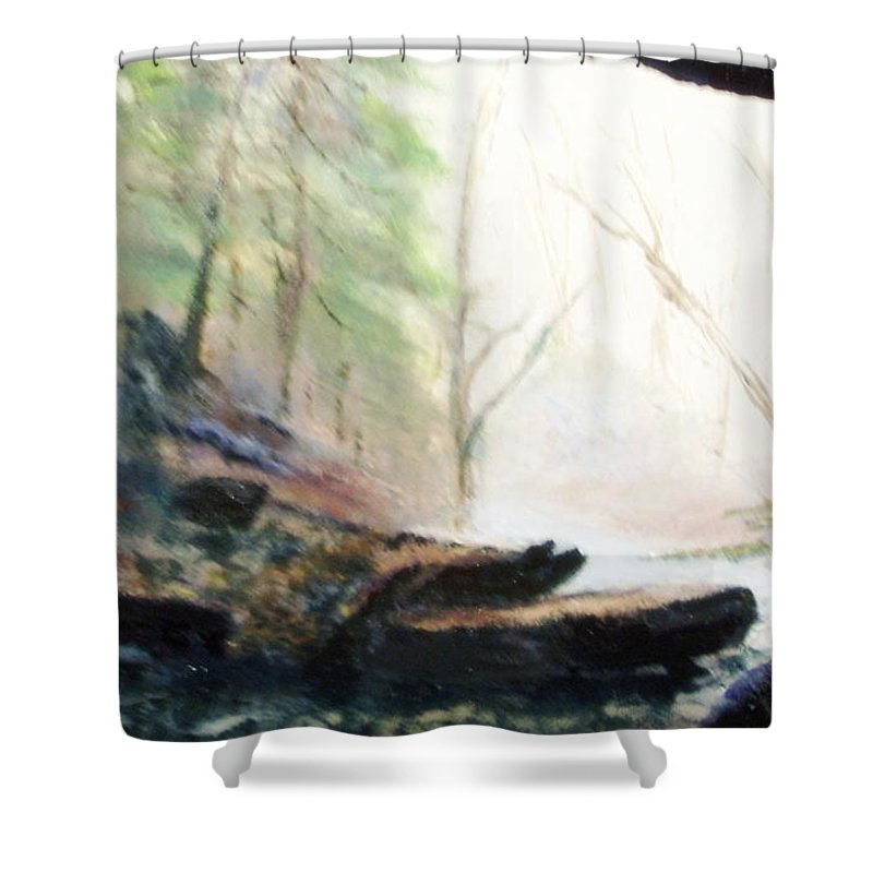 Cave Shower Curtain featuring the painting A Bears View by Gail Kirtz