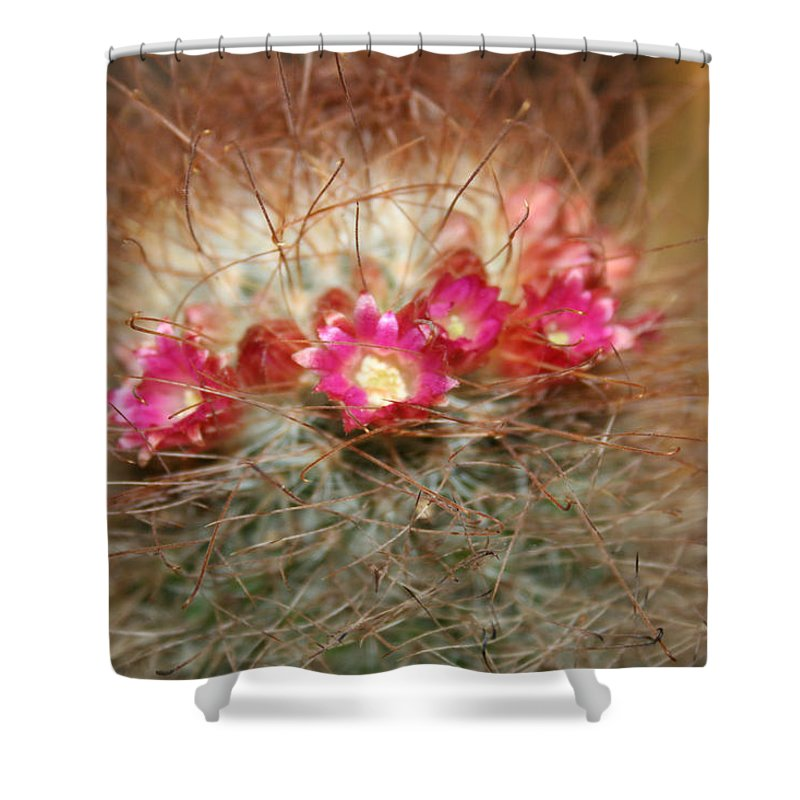 Flowers Nature Shower Curtain featuring the photograph A Beautiful Blur by Linda Sannuti