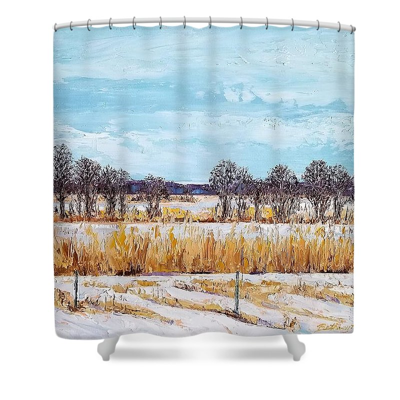 Oil Shower Curtain featuring the painting A Bird's Eye View by Bethany Kirwen
