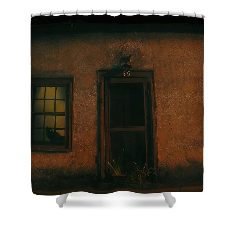 Black Cat Shower Curtain featuring the photograph A Black Cat's Night by David Lee Thompson