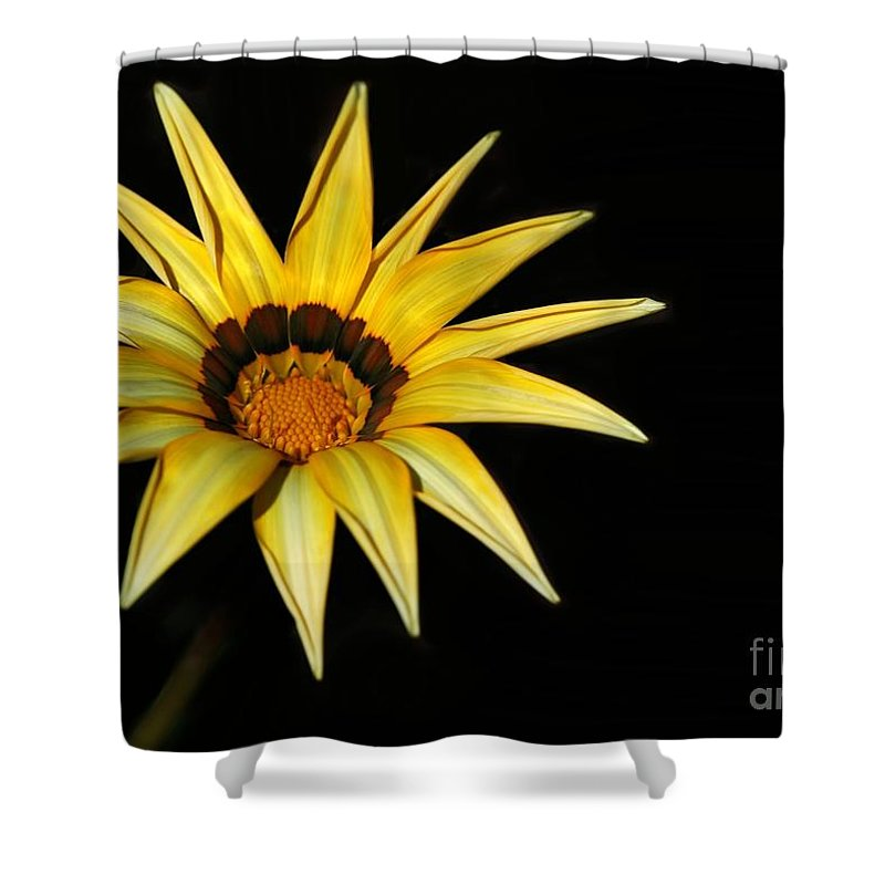 Flower Shower Curtain featuring the photograph A Bright Yellow Star by Sabrina L Ryan