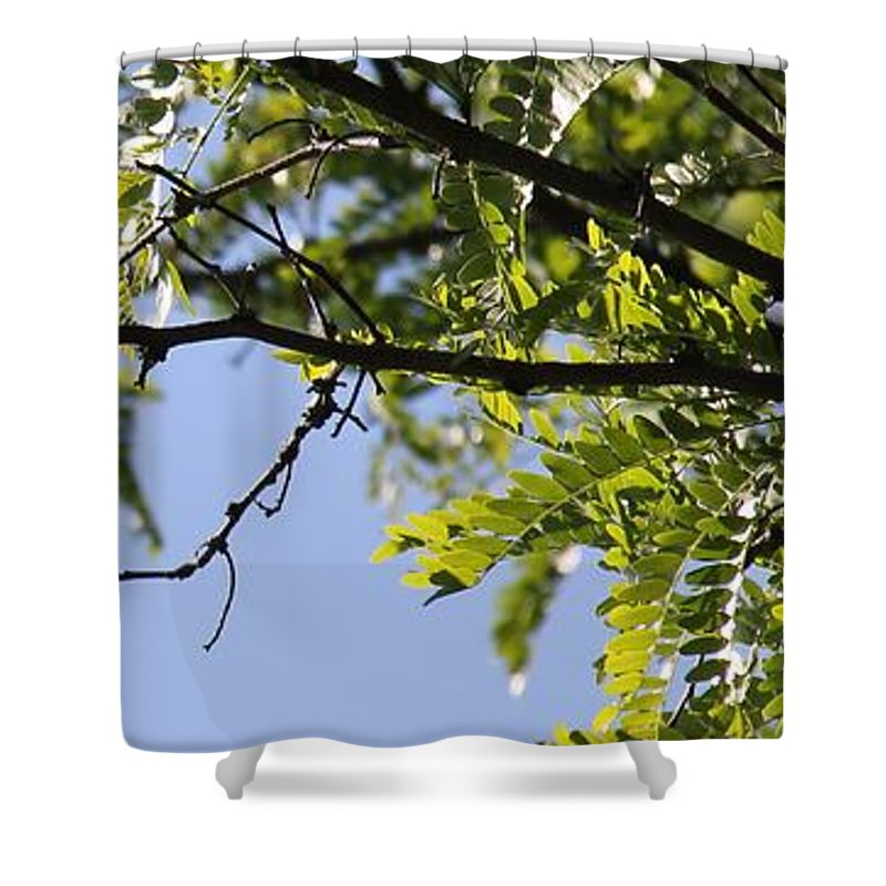 A Card In All Zen Shower Curtain featuring the photograph A Card In All Zen by Ed Smith