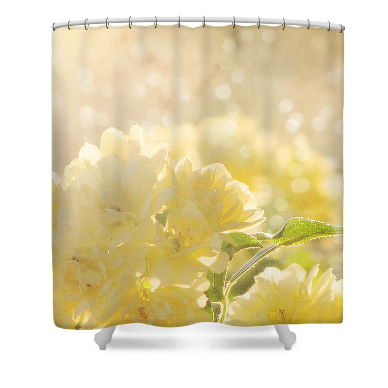 Flower Photography Shower Curtain featuring the photograph A Chance Of Showers by Amy Tyler
