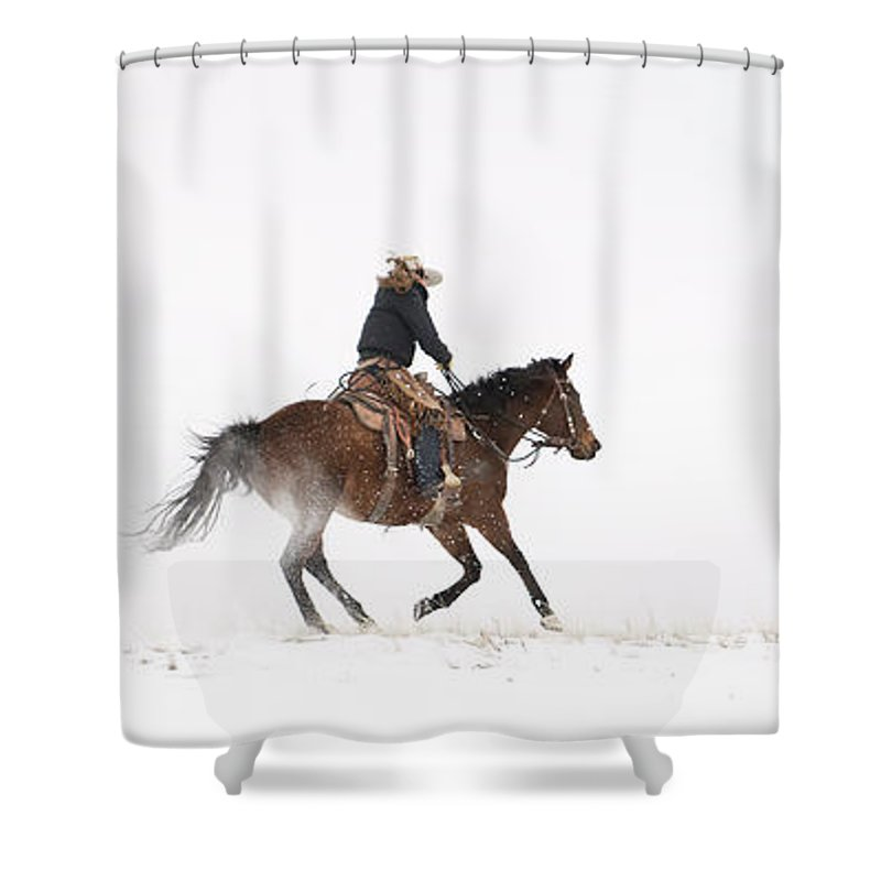 Horse Shower Curtain featuring the photograph A Chilly Ride by Pamela Steege