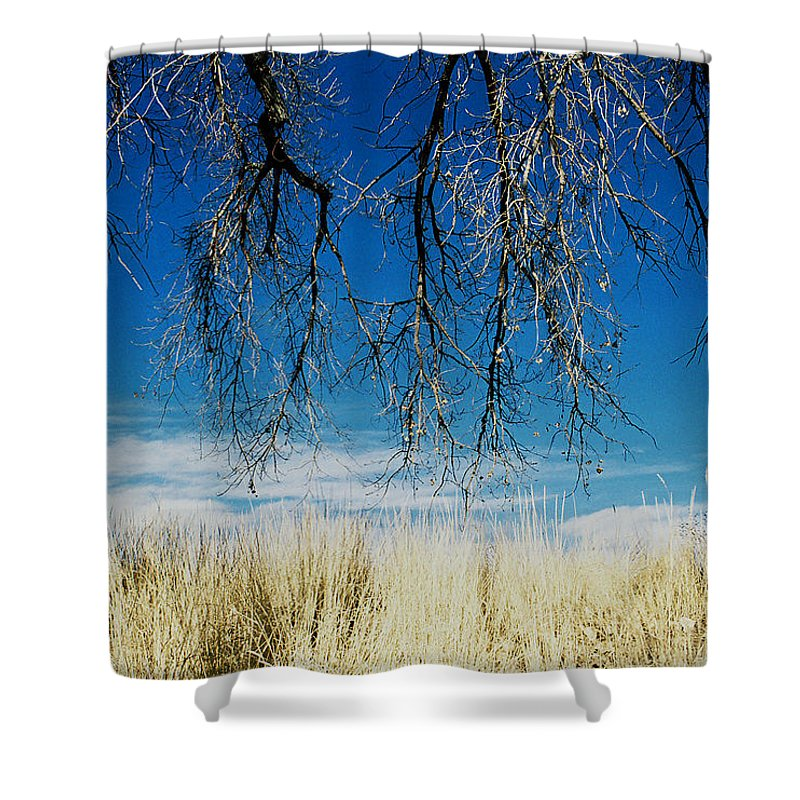 Nature Shower Curtain featuring the photograph A Comfortable Place by Ric Bascobert