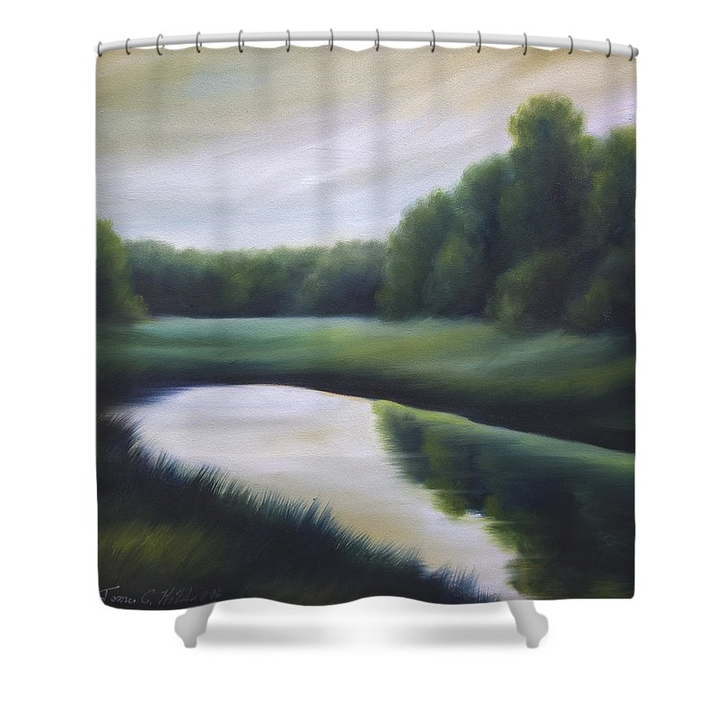 Nature; Lake; Sunset; Sunrise; Serene; Forest; Trees; Water; Ripples; Clearing; Lagoon; James Christopher Hill; Jameshillgallery.com; Foliage; Sky; Realism; Oils; Green; Tree Shower Curtain featuring the painting A Day In The Life 3 by James Christopher Hill