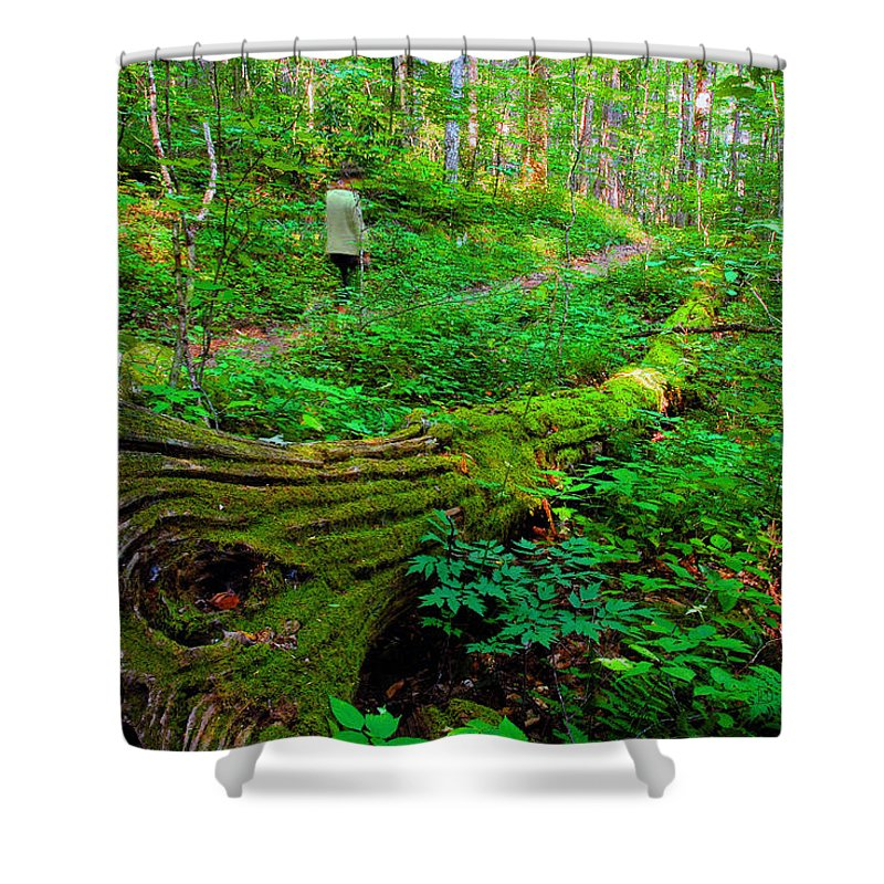 Hiking Shower Curtain featuring the painting A Forest Stroll by David Lee Thompson