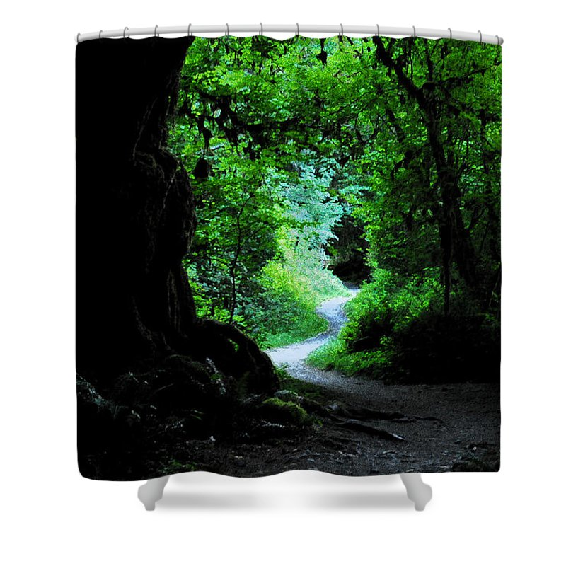 Art Shower Curtain featuring the painting A Forest Trail by David Lee Thompson