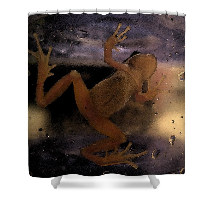 Frog Shower Curtain featuring the digital art A Frogs World by Holly Ethan