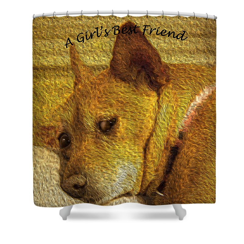 Dog Shower Curtain featuring the photograph A Girl's Best Friend by C Devon Brown