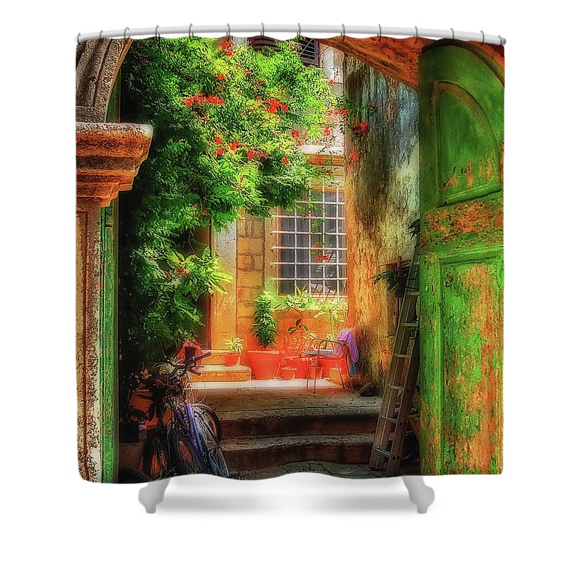 Doorway Shower Curtain featuring the photograph A Glimpse by Lois Bryan